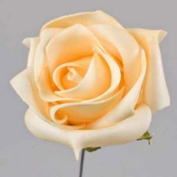 Rosen Kunstblumen champagner Deko Schaumblüten. 7cm bei Shophaus 24