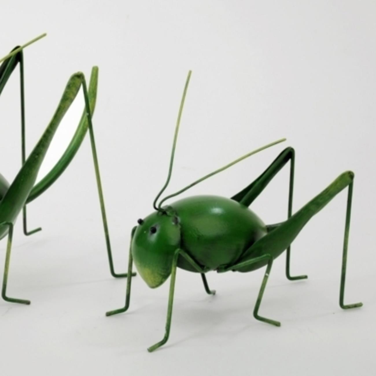 Dekorative Heuschrecken Figur Online Im Deko-Shop